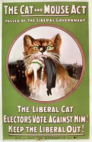 An Edwardian Propaganda Poster. The background is bright green. A large cat holds an unconscious suffragette in it's jaws. Large text reads 'The Cat and Mouse Act'. Smaller text reads 'Passed by the Liberal Government. The Liberal Cat. Electors Vote Against Him! Keep the Liberal Out!'